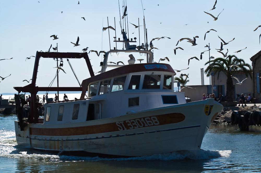 Rückkehr der Fischerboote