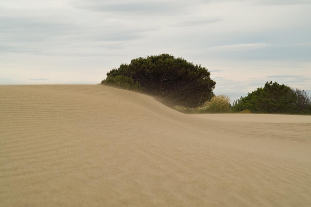...Wind und Sand und Himmel